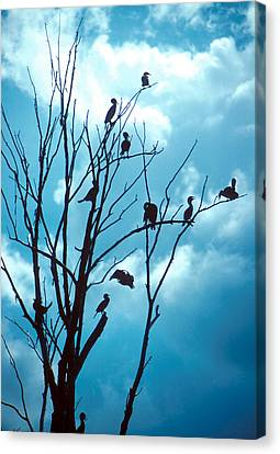 Lunch Crowd Canvas Print