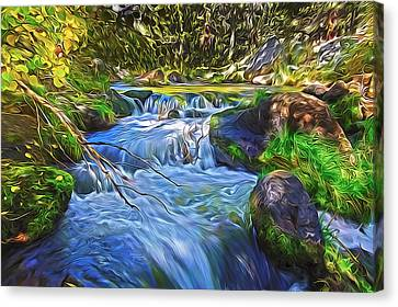 Lundy Creek Flow Canvas Print