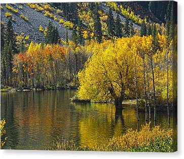 Lundy Lake In Fall Canvas Print
