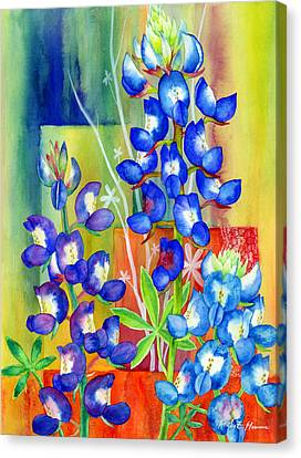 Lupinus Texensis Canvas Print by Hailey E Herrera