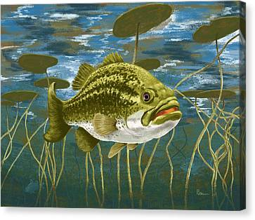 Lurking Lunker Canvas Print by Kevin Putman