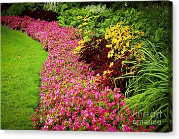 Lush Summer Garden Canvas Print by Elena Elisseeva