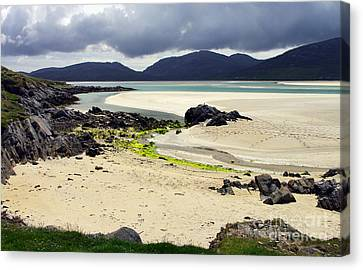 Canvas Print featuring the photograph Luskentyre Bay by Jacqi Elmslie
