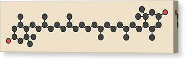 Lutein Carotenoid Molecule Canvas Print by Molekuul