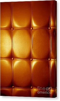 Luxury Genuine Leather. Golden Color Canvas Print by Michal Bednarek