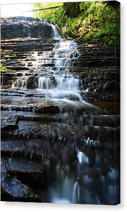 Canvas Print - Lwv60001 by Lee Wolf Winter