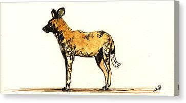 Lycaon Wild Dog  Canvas Print by Juan  Bosco