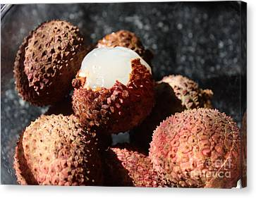 Lychees Canvas Print by Julie Alison