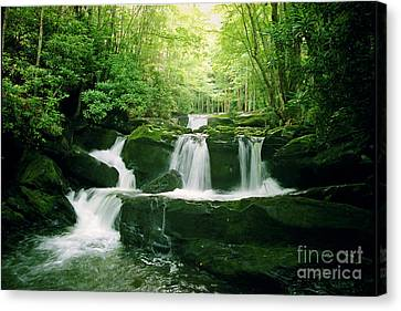 Lynn Camp Cascades Canvas Print