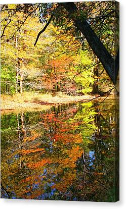 Canvas Print featuring the photograph Lynn Run-5 by Denise Moore