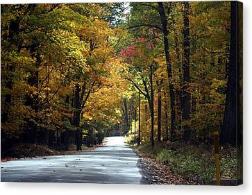 Canvas Print featuring the photograph Lynn Run Pa by Denise Moore