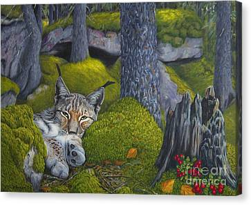 Painterly Canvas Print - Lynx In The Sun by Veikko Suikkanen
