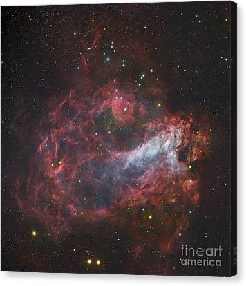 M17, The Omega Nebula In Sagittarius Canvas Print by Robert Gendler