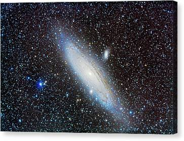 M31 Andromeda Galaxy With Companions Canvas Print by Alan Dyer