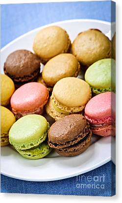 Macaroon Cookies Canvas Print by Elena Elisseeva