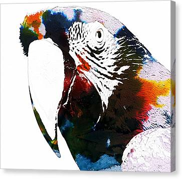 Macaw In Watercolor Canvas Print