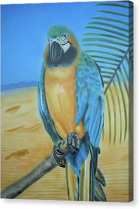 Canvas Print featuring the painting Macaw On A Limb by Thomas J Herring