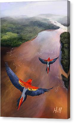 Kevin Hill Canvas Print - Macaws In Flight by Kevin Hill
