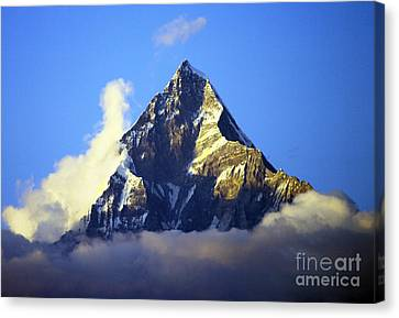 Canvas Print featuring the photograph Machapuchare - Sacred Mountain by Jacqi Elmslie