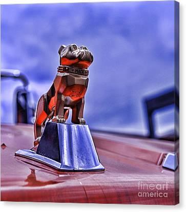 Mack The Bulldog Mascot Canvas Print