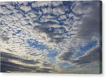 Mackerel Sky Natural Canvas Print by Amanda Holmes Tzafrir