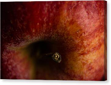 Canvas Print featuring the photograph Macro Apple by Erin Kohlenberg