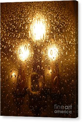 Macro Lights Canvas Print by Joseph Baril