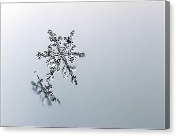 Macro Snowflake Canvas Print by EXparte SE