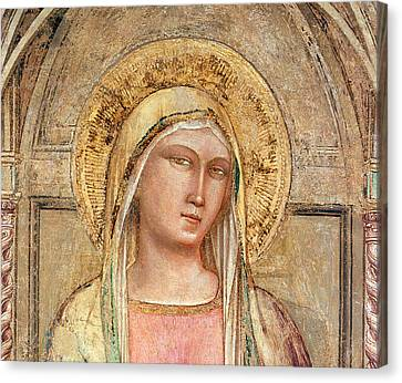 Close Up Canvas Print - Madonna Del Parto by Taddeo Gatti