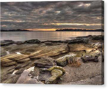 Madrona Point Canvas Print by Randy Hall