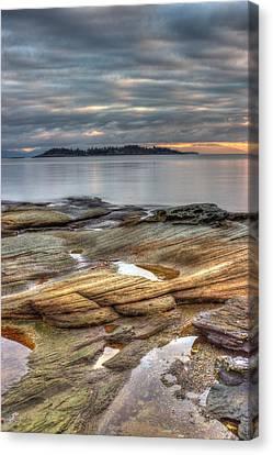 Madrona Sunrise Canvas Print by Randy Hall