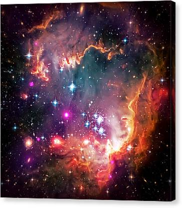 The Hubble Telescope Canvas Print - Magellanic Cloud 2 by Jennifer Rondinelli Reilly - Fine Art Photography