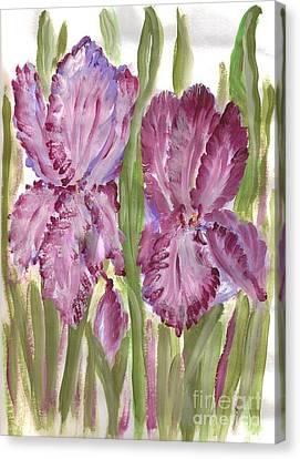 Magenta Iris Canvas Print by Debbie Wassmann