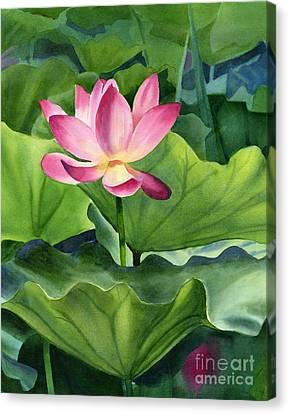 Magenta Lotus Blossom Canvas Print by Sharon Freeman