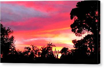 Canvas Print featuring the photograph Magenta Sunset by DigiArt Diaries by Vicky B Fuller