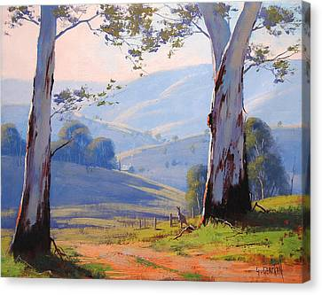 Eucalyptus Canvas Print - Magestic Gums by Graham Gercken