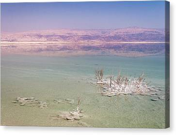 Magic Colors Of The Dead Sea Canvas Print by Sergey Simanovsky