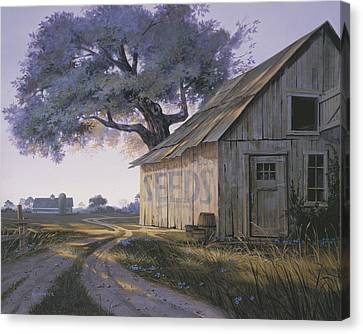 Magic Hour Canvas Print by Michael Humphries