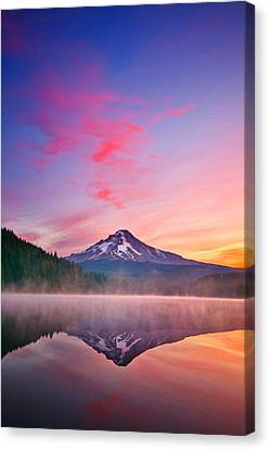 Magic Morning Canvas Print by Darren  White