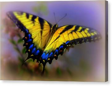 Yellow Butterfly Canvas Print - Magic Of Flight by Karen Wiles