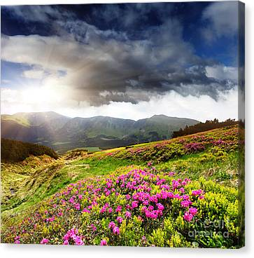 Canvas Print featuring the photograph Magic Pink Summer Mountain by Boon Mee