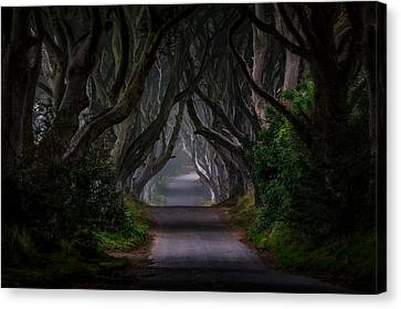 Tunnels Canvas Print - Magic Road by Piotr Galus