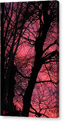 Canvas Print featuring the photograph Magic Sunset  by Colette V Hera  Guggenheim