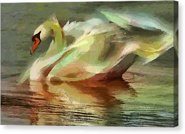 Magic Swan Canvas Print