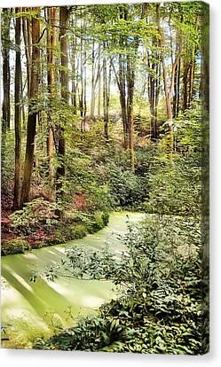 Magic World Of Botanic Gardens Canvas Print