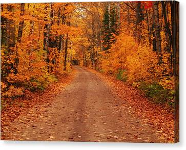 Magical Autumn Mystery Canvas Print