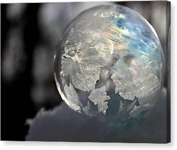 Magical Bubble Canvas Print by Candice Trimble