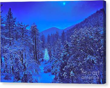 Magical Forest Canvas Print by Gem S Visionary