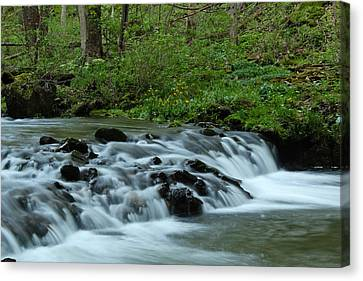 Magical River Canvas Print by Julie Andel
