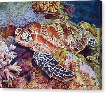 Magical Sea Turtle Canvas Print by Sharon Farber